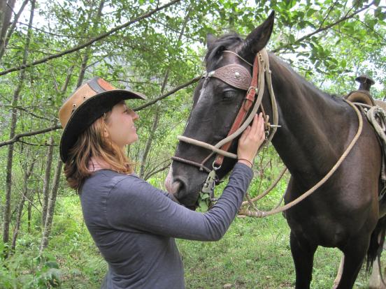 kyle_horse